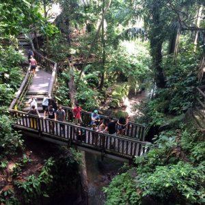 Sacred-Monkey-Forest-Sanctuary-Ubud-Bali-4